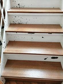 階段の塗装修理,町田市